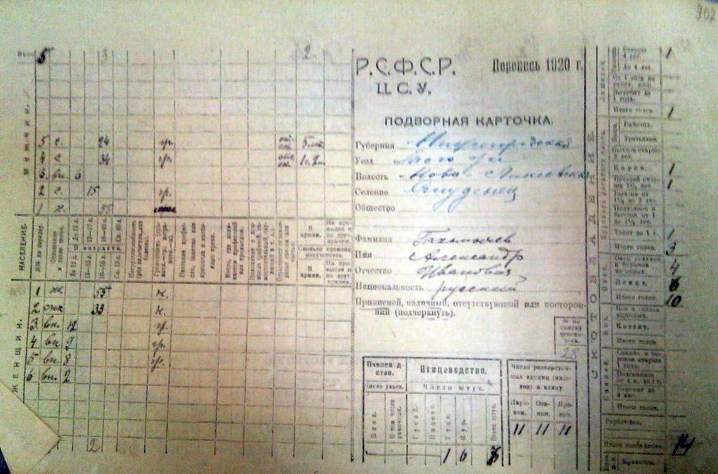 Пахомычев Александр Иванов. Подворная перепись